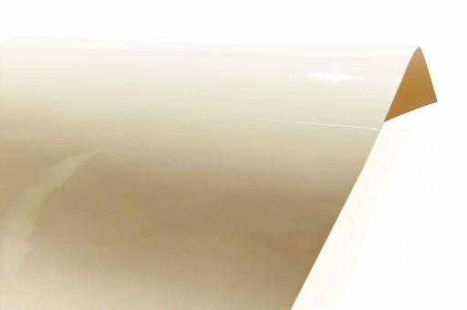 Gloss Premium 307
