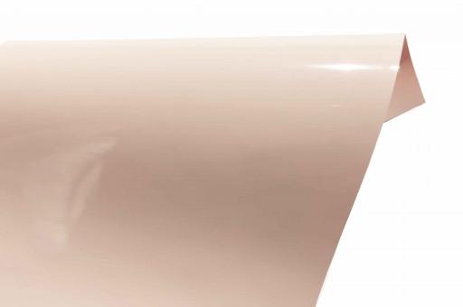 Gloss Premium 406