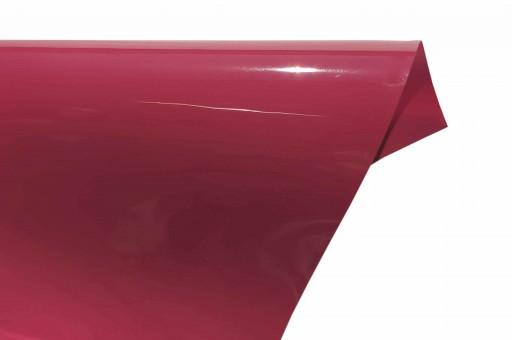 Gloss Premium 476